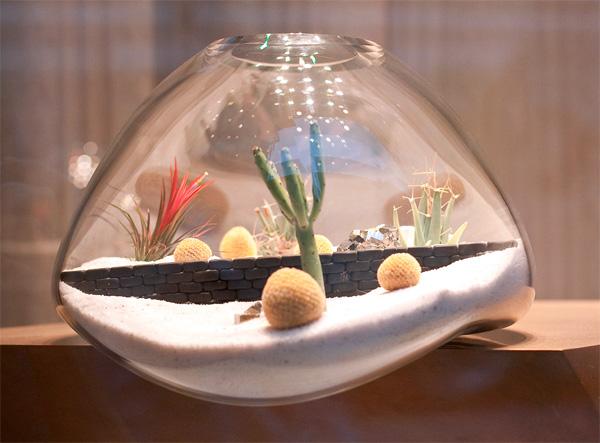litill terrariums